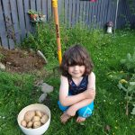 The potatoes were a huge success